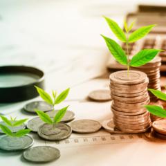 Cerchi un modo per investire al meglio alle Canarie? Ecco cosa dovresti sapere